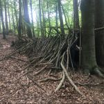 In het bos achter de camping